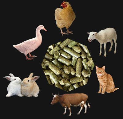 pellets_for_animal_feeding