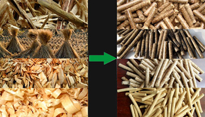 various_biomass_pellets