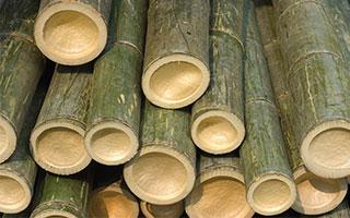 bamboo-pellet-mill